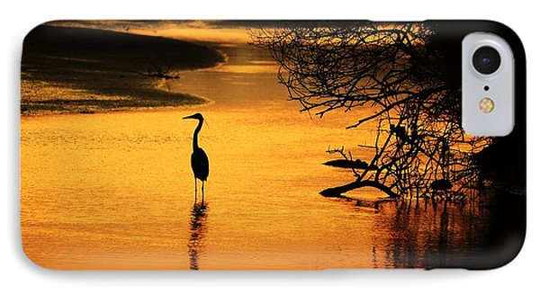 Sublime Silhouette Phone Case by Al Powell Photography USA