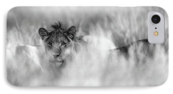 Lion iPhone 7 Case - Subtle Mane by Jaco Marx