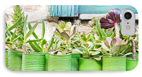 Succulent Plants IPhone Case
