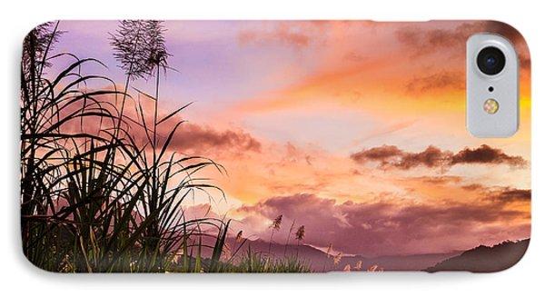 Far North Queensland iPhone 7 Case - Sugar Cane In Far North Queensland by Silken Photography