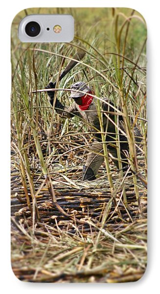 IPhone Case featuring the photograph Sugarcane Slash 2 by Henry Kowalski