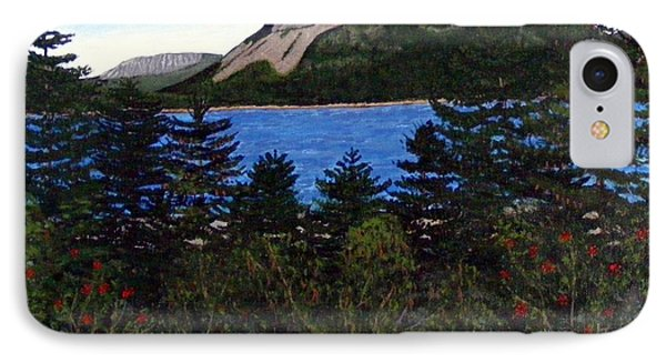 Sugarloaf Hill Phone Case by Barbara Griffin