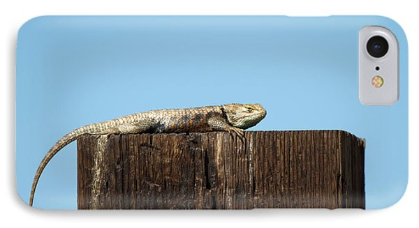 Sulky Lizard IPhone Case by Martha Marks