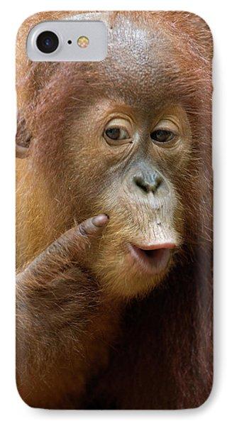 Sumatran Orangutan Baby Calling Phone Case by Suzi Eszterhas