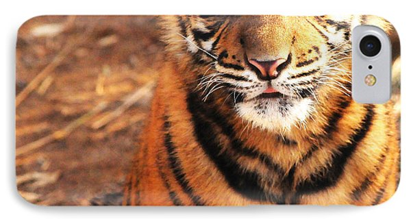 IPhone Case featuring the photograph Sumatran Tiger Cub by Olivia Hardwicke