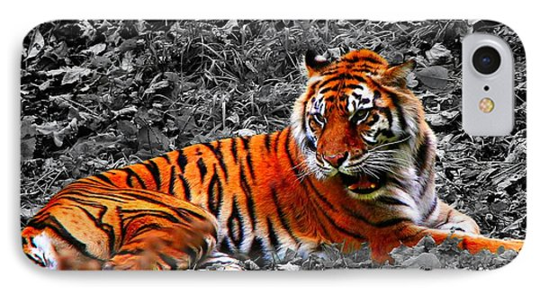IPhone Case featuring the photograph Sumatran Tiger by Davandra Cribbie