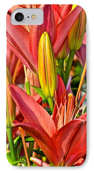 Summer Bouquet Phone Case by Frozen in Time Fine Art Photography
