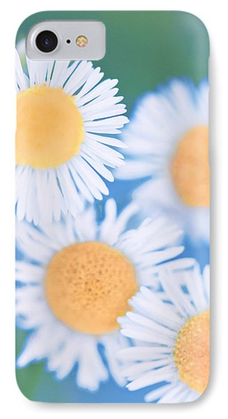 Summer Daisies IPhone Case