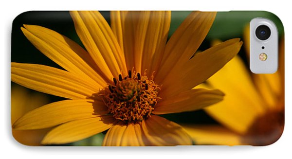 IPhone Case featuring the photograph Summer Delight by Denyse Duhaime