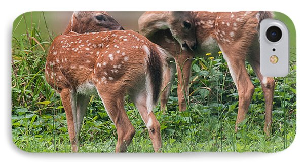 Summer Fawns IPhone Case