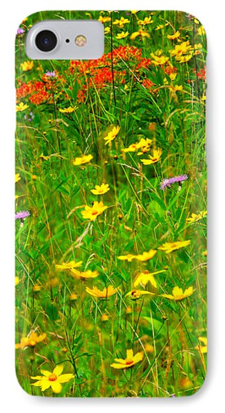 Summer Flowers On The Blue Ridge Parkway I Phone Case by Dan Carmichael