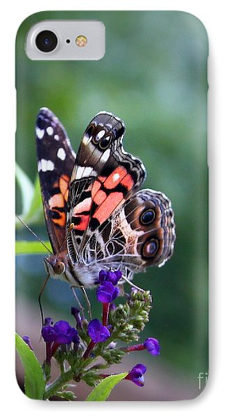 IPhone Case featuring the photograph Summer Flutter by Geri Glavis