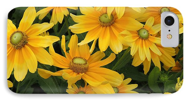 IPhone Case featuring the photograph Summer Gold by Teresa Schomig