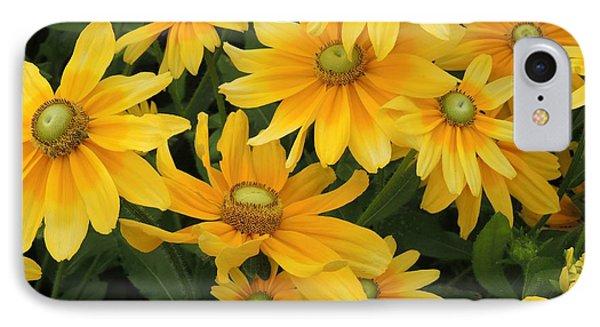 Summer Gold IPhone Case by Teresa Schomig