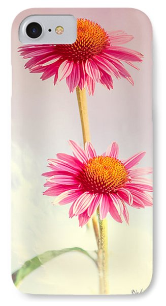 Summer Impressions Cone Flowers IPhone Case by Bob Orsillo