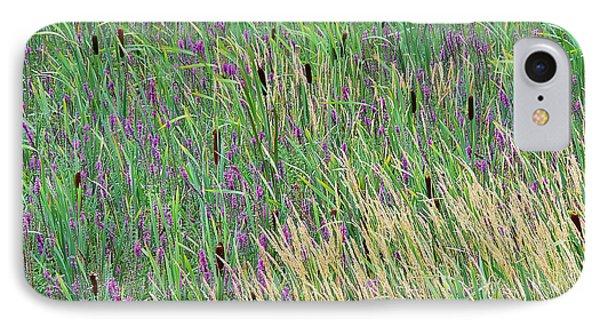 Summer Marsh IPhone Case by Alan L Graham