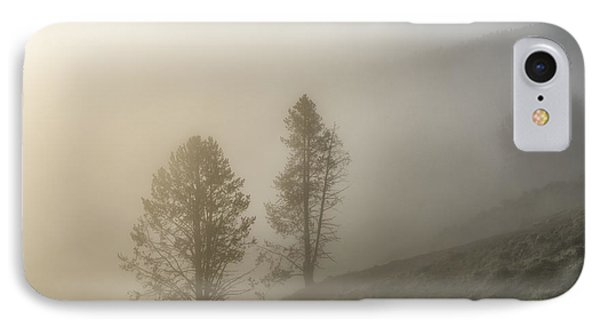 Summer Morning In Yellowstone Phone Case by Sandra Bronstein