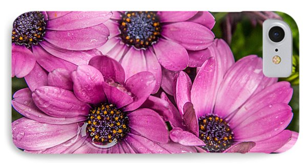 Summer Pink 3 IPhone Case by Susan Cole Kelly Impressions