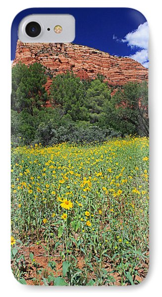 Summer Rain Results IPhone Case by Gary Kaylor