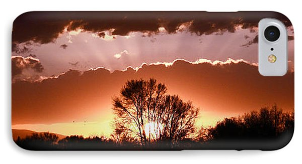 IPhone Case featuring the photograph Summer Sunset by Steven Reed