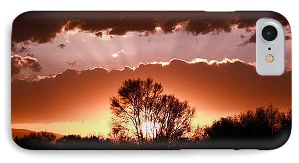 Summer Sunset IPhone Case by Steven Reed