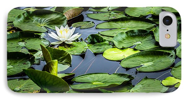 Summer Water Lily 1 IPhone Case by Susan Cole Kelly Impressions