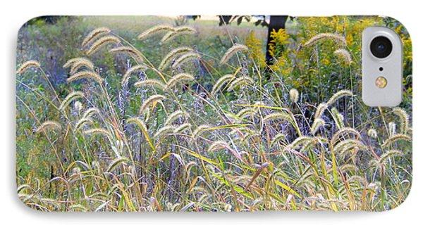 Summer Wheat IPhone Case