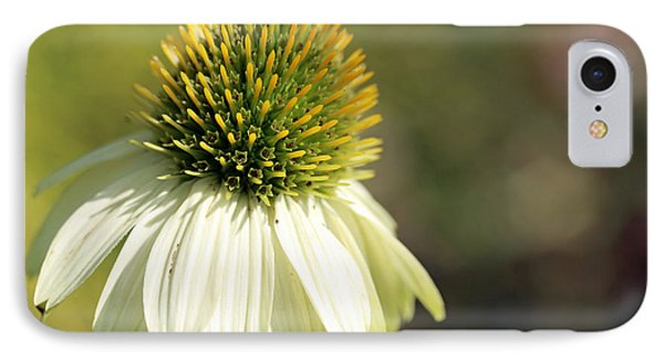 Summer White IPhone Case by Mary Haber