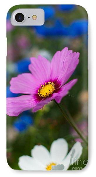 IPhone Case featuring the photograph Summer Wild Blooms by Matt Malloy
