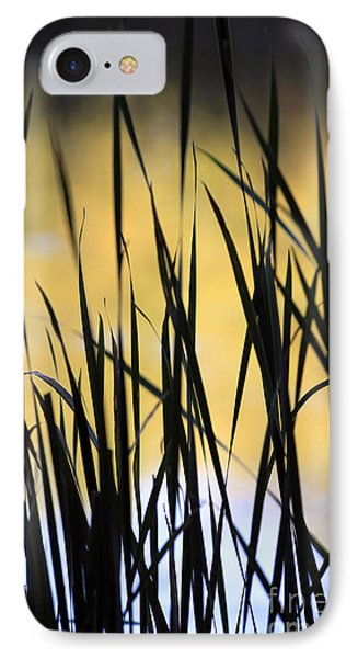 IPhone Case featuring the photograph Summer's Goodbye by Kate Purdy