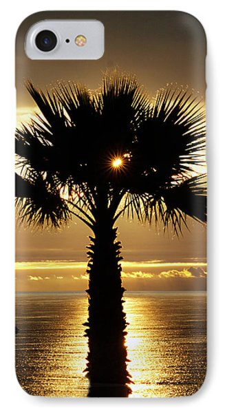 Sun And Palm And Sea IPhone Case by Joe Schofield