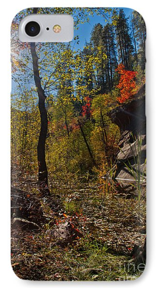 Sun And  The Tree Phone Case by Brian Lambert