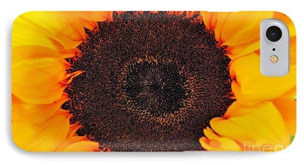 Sun Delight IPhone Case