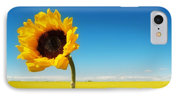IPhone Case featuring the photograph Sun Drenched Dreams by Lisa Knechtel