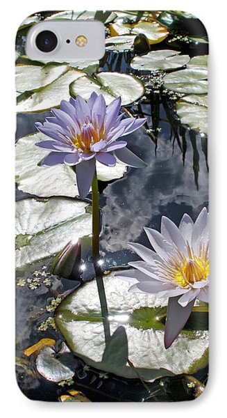 Sun-drenched Lily Pond         Phone Case by Kaye Menner