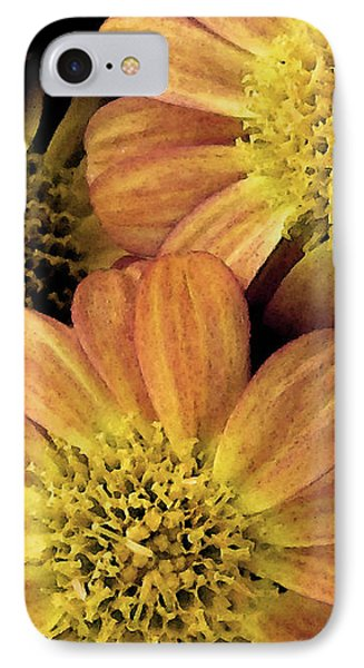 IPhone Case featuring the photograph Sun Fans by Jean OKeeffe Macro Abundance Art