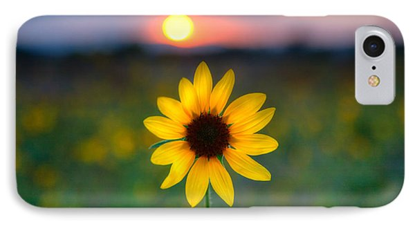 Sun Flower Iv IPhone Case by Peter Tellone