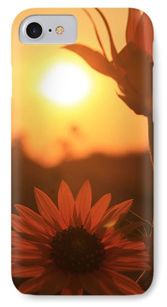 IPhone Case featuring the photograph Sun Glow by Alicia Knust