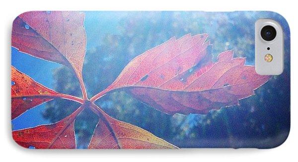 Sun Leaf IPhone Case by Candice Trimble