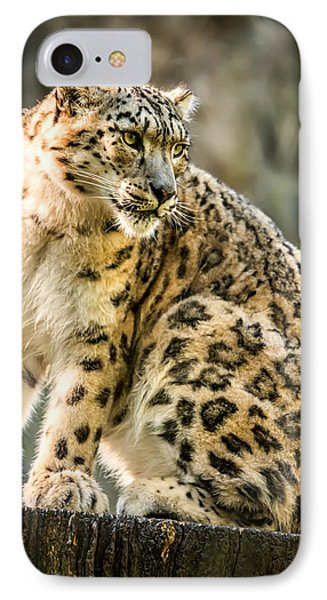 Sun Leopard Portrait IPhone Case by Chris Boulton