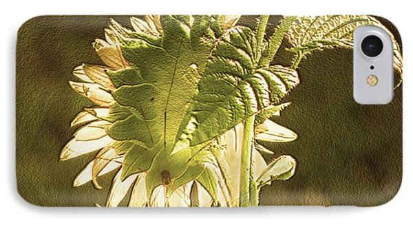 IPhone Case featuring the photograph Sun-lite Sunflowwer by Donna Brown