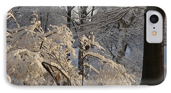 IPhone Case featuring the photograph Sun On Snow Covered Branches by Winifred Butler