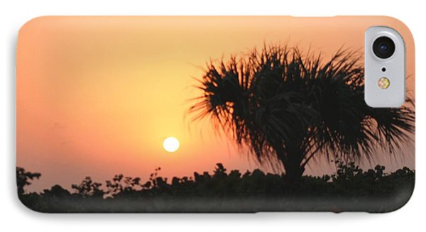 Sun Rise And Palm Tree IPhone Case by Nance Larson