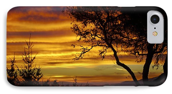 Sun Rising  IPhone Case by Alex King