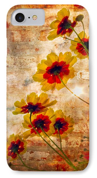 Sun Seekers Phone Case by Debra and Dave Vanderlaan