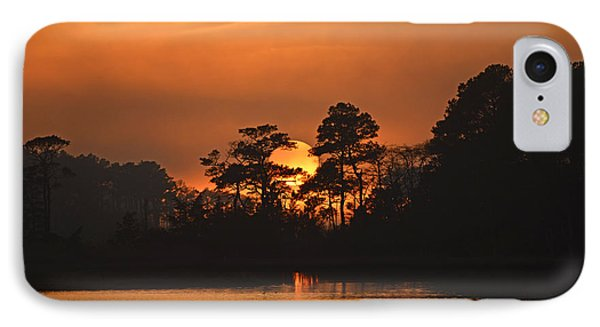 IPhone Case featuring the photograph Sun Setting In Trees by Bill Swartwout