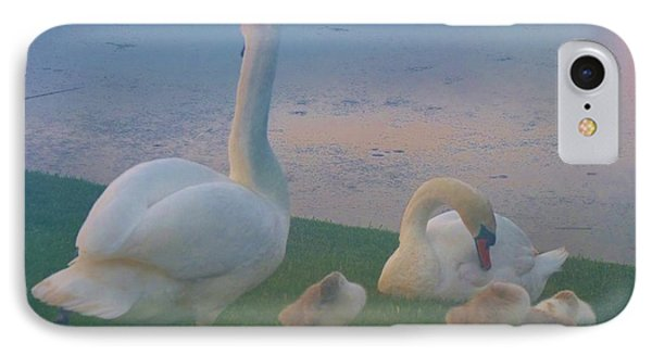 IPhone Case featuring the photograph Sun Setting On Swan Family by Jeanette Oberholtzer