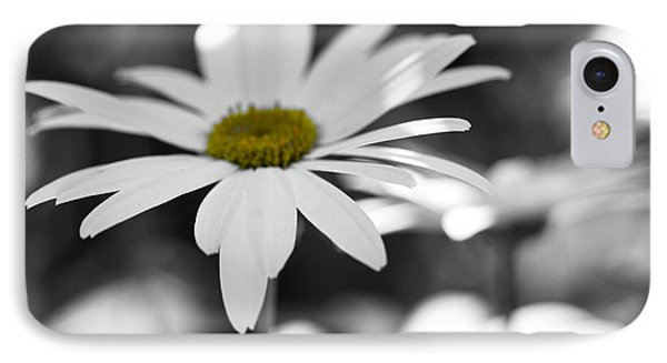 IPhone Case featuring the photograph Sun-speckled Daisy by Don Schwartz