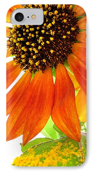 IPhone Case featuring the photograph Sun Up by Kathy Bassett