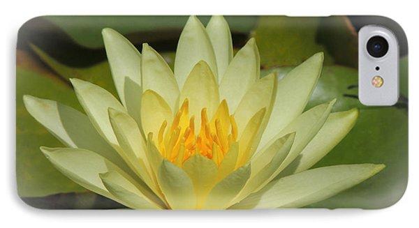 Sunburst IPhone Case by Teresa Schomig